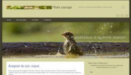 création de site internet pour artiste
